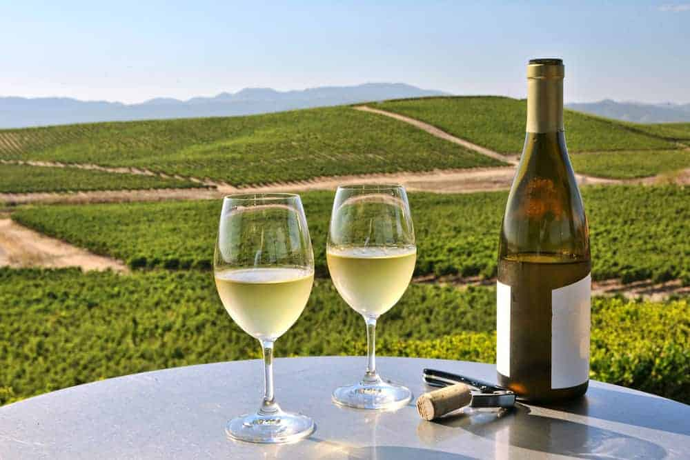 The BestSan Francisco Wine Tours Worth Your Money