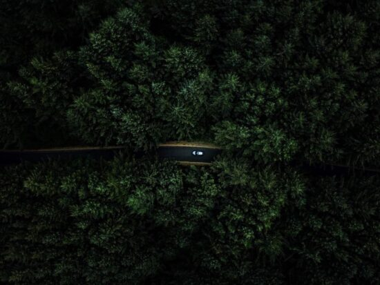 view of a car driving along a road in oregon with dark and moody trees