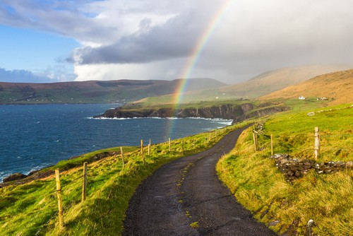 Don't be afraid to drive when planning a trip to Ireland