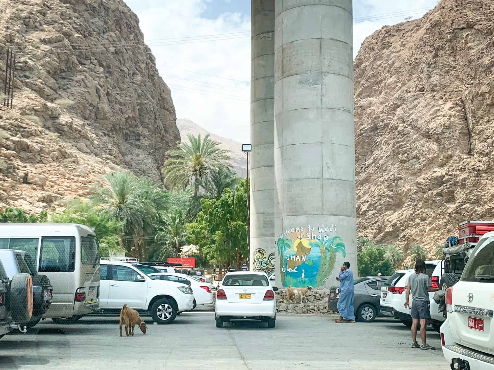There are goats at the Wadi Shab parking lot