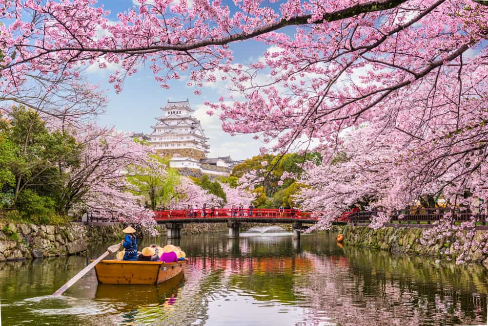 don't limit yourself to cherry blossom season when planning a trip to Japan