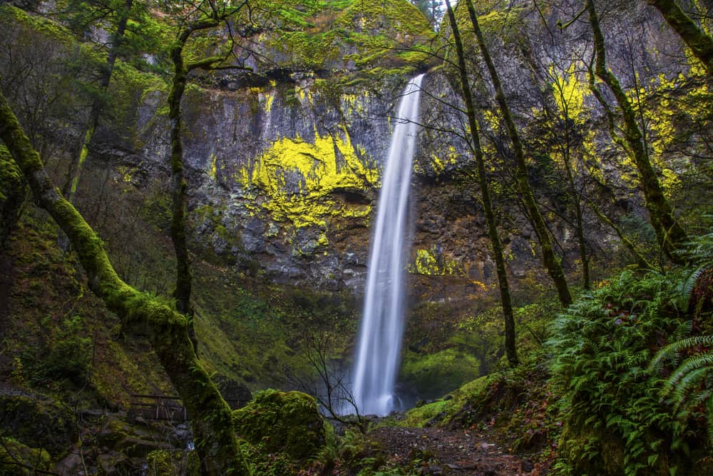 Elowah Falls drops over 200 feet into an amphitheater, don't miss this gorgeous fall when visiting waterfalls in Oregon