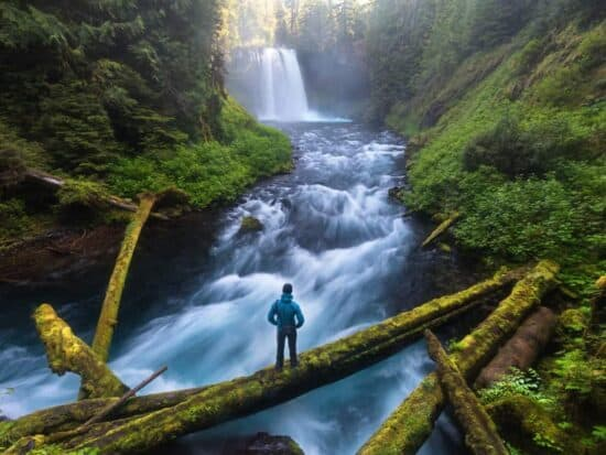 waterfalls in Oregon are tourist draws Koosah Falls is a bit more secluded