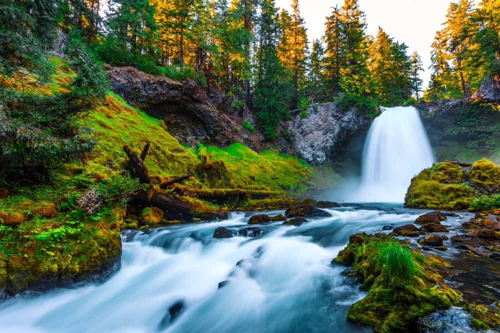 for one of the waterfalls in Oregon that is wheelchair accessible stop by Sahalie Falls