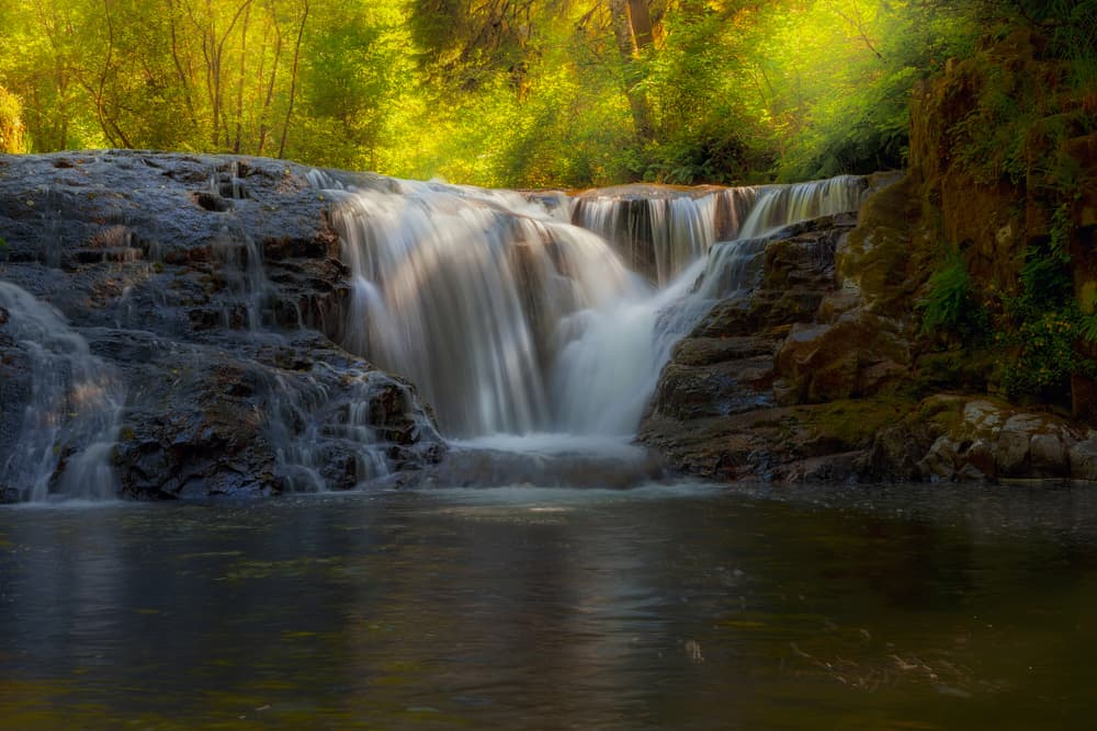 for a family-friendly hike to waterfalls in Oregon visit Sweet Creek Falls
