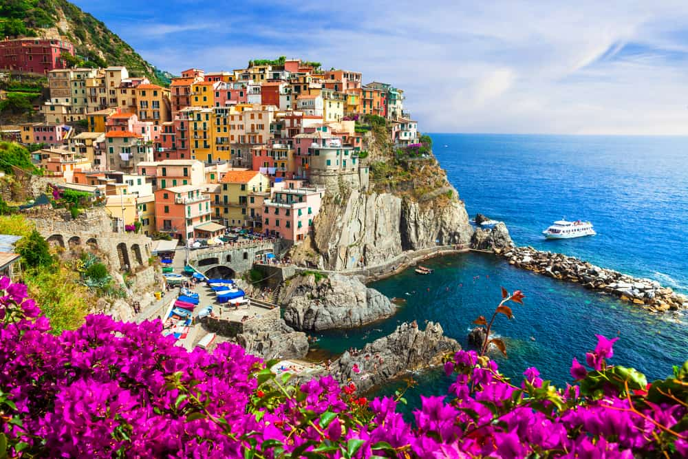 flowers in front of Manarola Italy