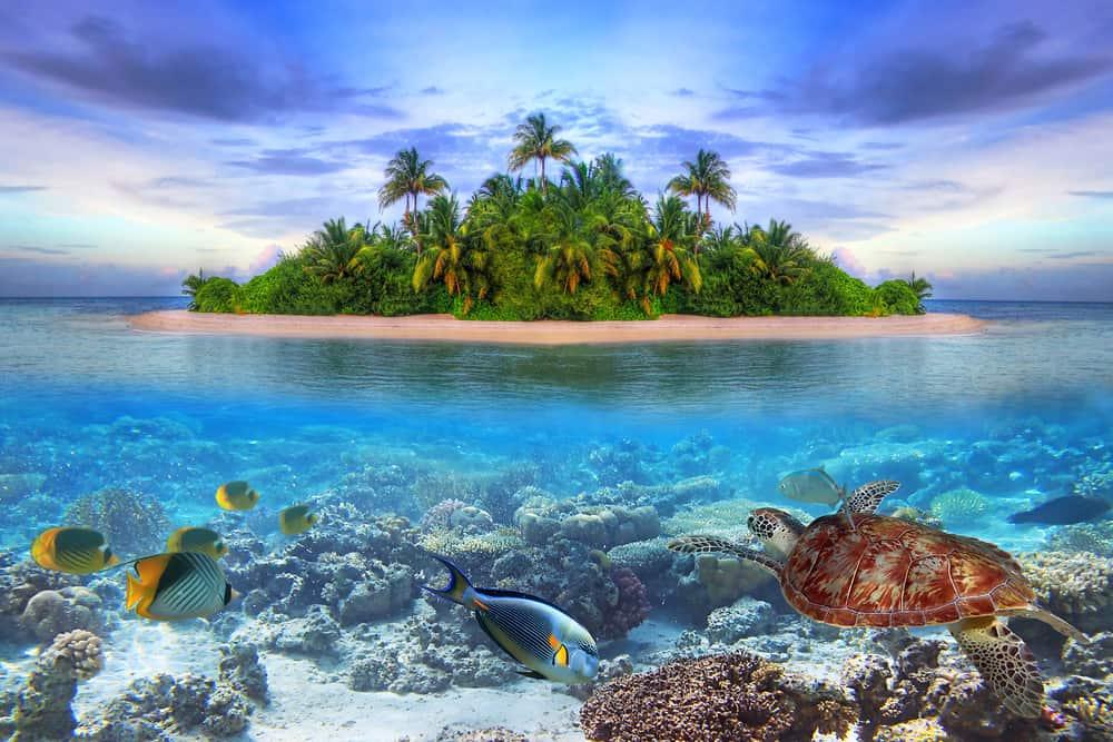 Photo of Maldives Island