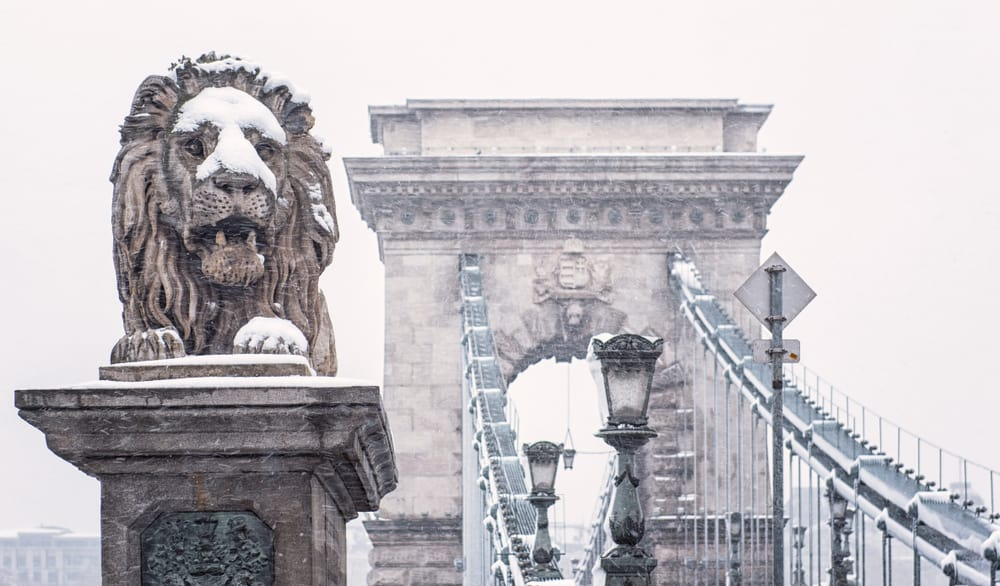 The famous chain bridge and lion during Budapest in winter