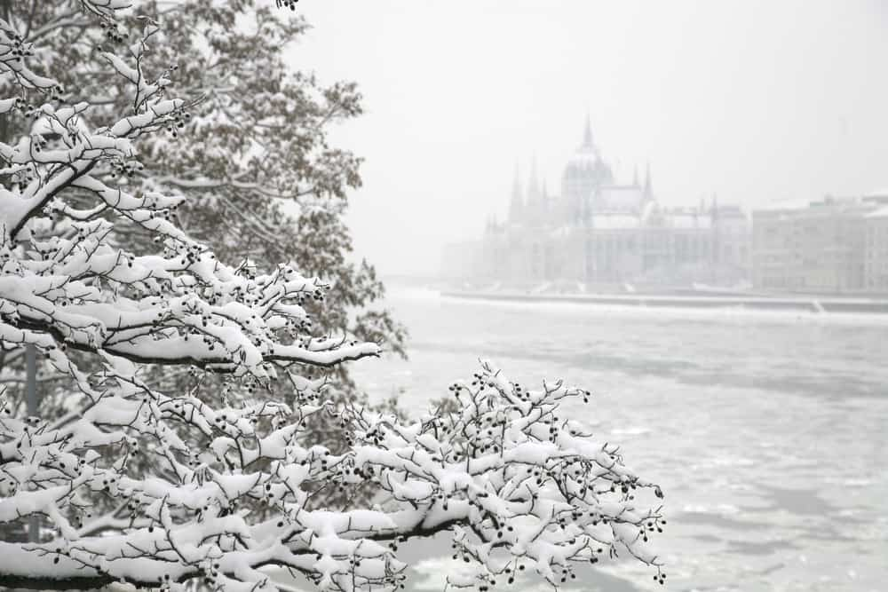Budapest in winter with snow covering a tree and theHungarian Parliament Building
