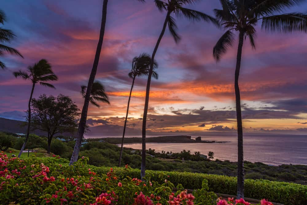 Photo of sunset in Lanai