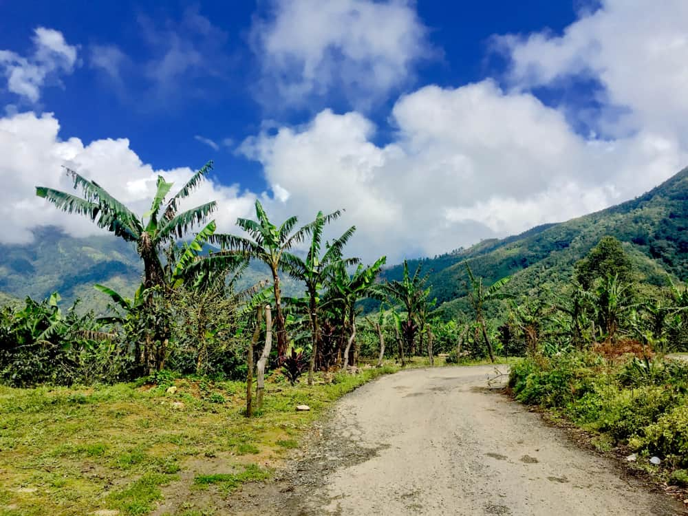 Photo of Blue Mountains National Park in Jamaica