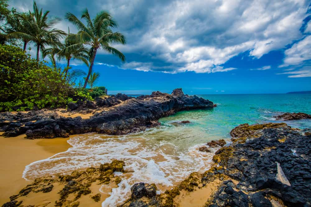 rocky coastline in Maui Hawaii with palm trees and blue sky with clouds