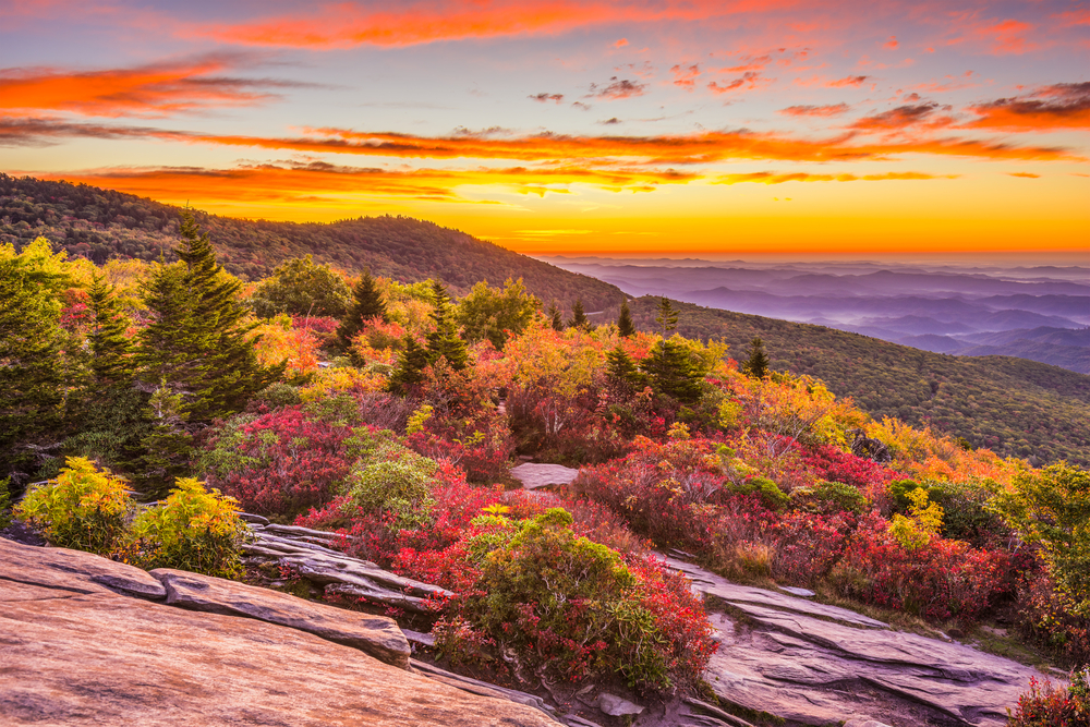 grandfather mountain is one of the best places for fall foliage in NC