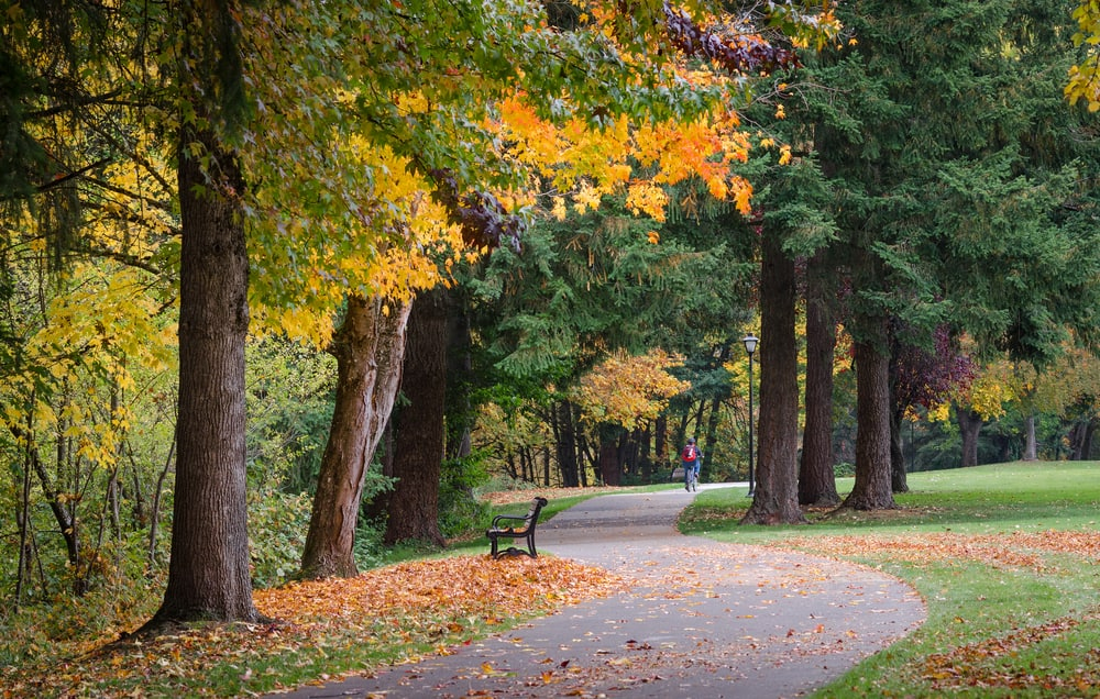 a riverfront path in Eugene on your west coast road trip