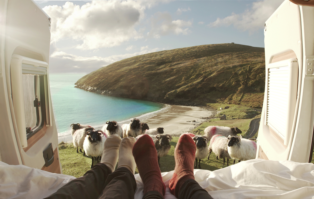 Photo of view of sheep and coastline out a window.