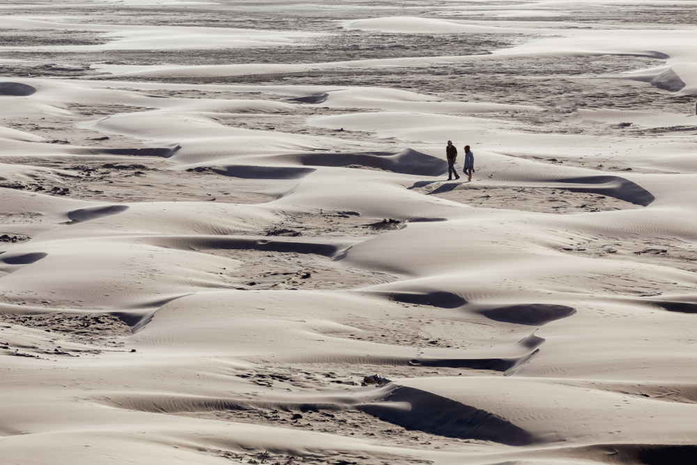 walking the dunes at the Oregon Dunes National Recreational Area on your Oregon coast road trip