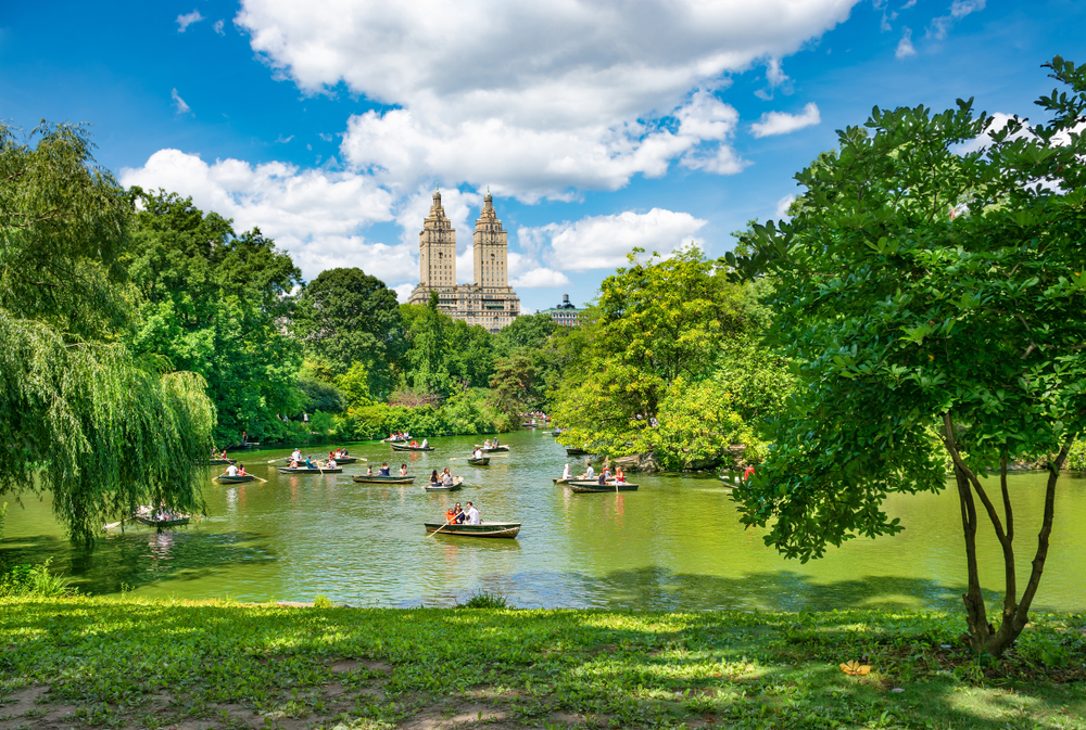 People row boating at Central Park on a beautiful day