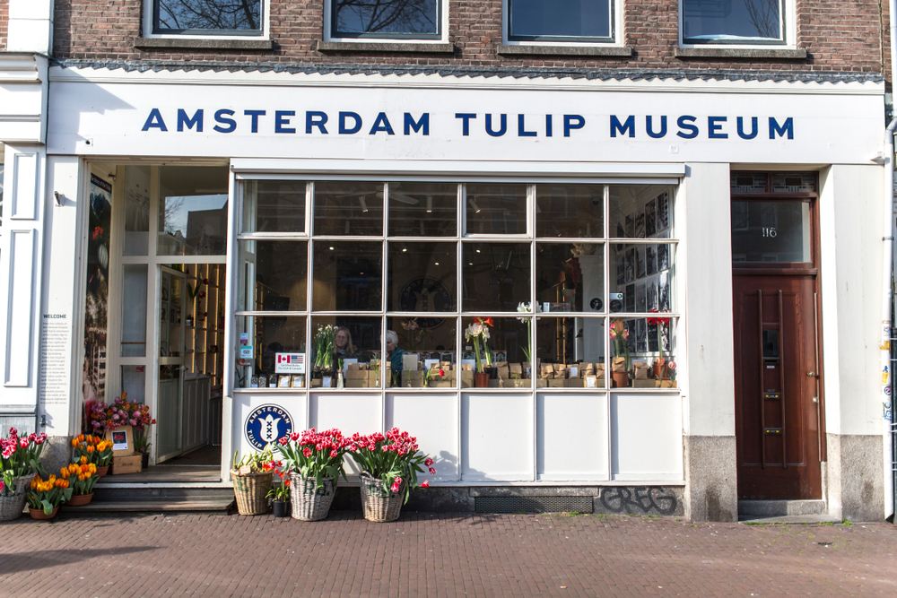 3 Days in Amsterdam Tulip Museum