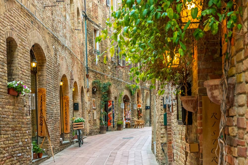 brown brick Italian alleyway with plants