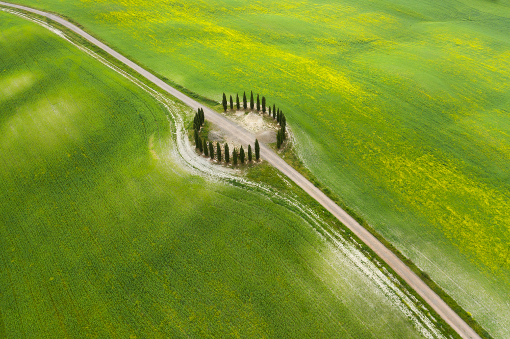 round circle of trees surrounded by green grass aerial shot day trips from Florence