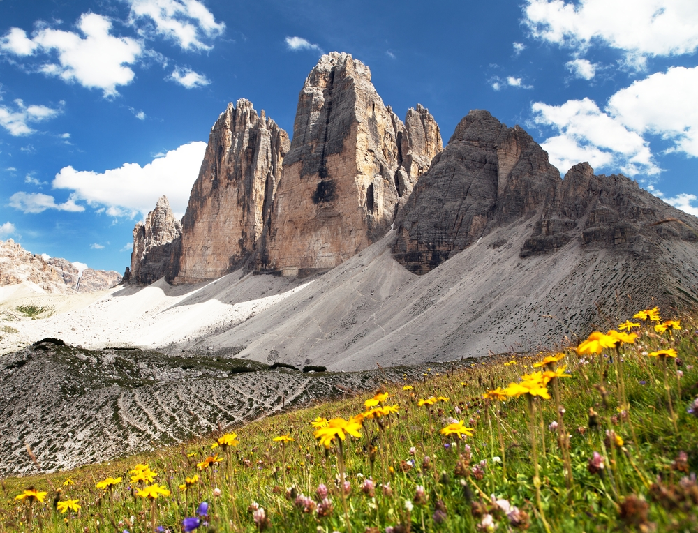 Well known Tre Cime jutting out of the wildflower pasture from Dolomites Hiking area.