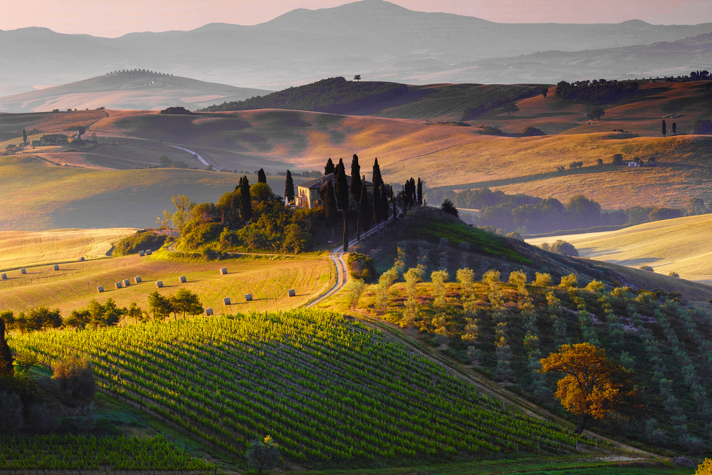 The stunning scenery of Val d'Orcia