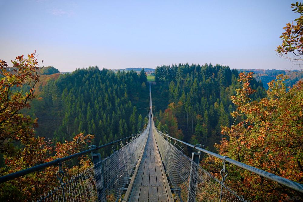 Geierlay suspension bridge stretching high above the mountain forest below.