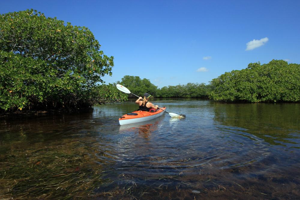 Florida Road Trip Biscayne National Park Kayak