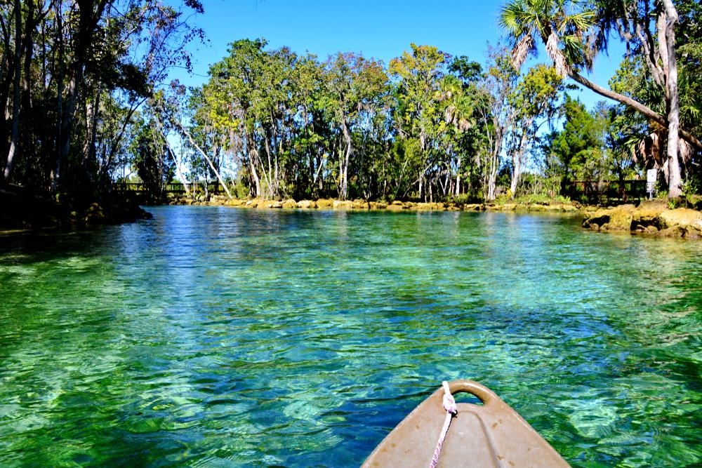 Florida Road Trip Crystal River