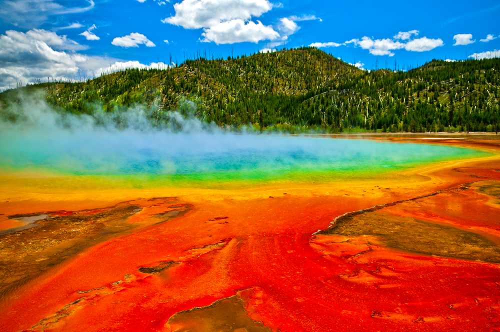 Picture of Cerulean Geyser in Yellowstone