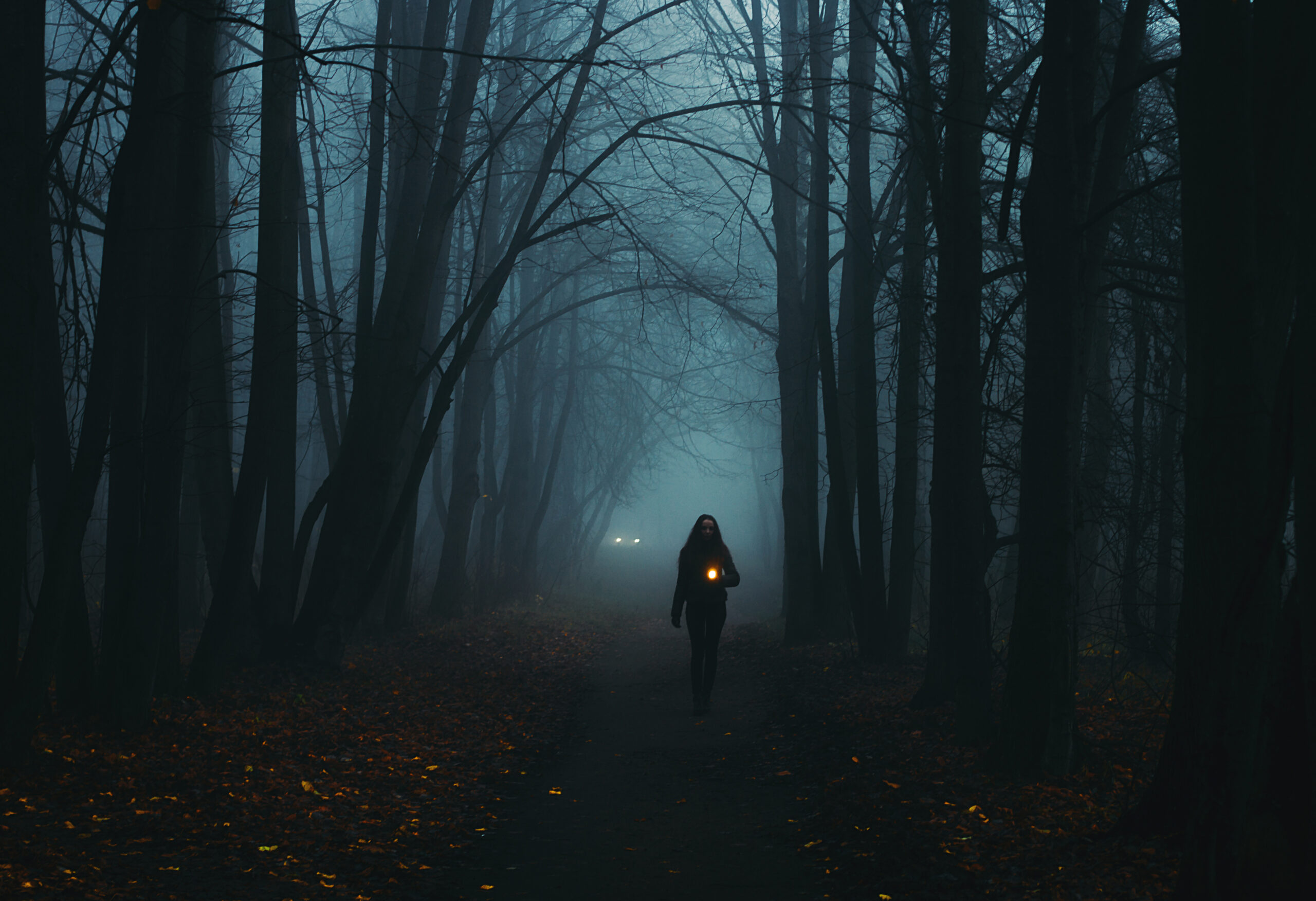 Photo of a foggy wooded area featuring a person walking in the dark with a latern.