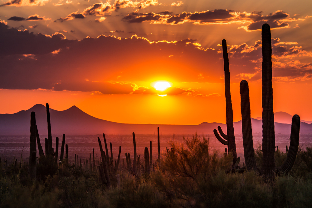 the Arizona desert on one of the best road trips in the USA