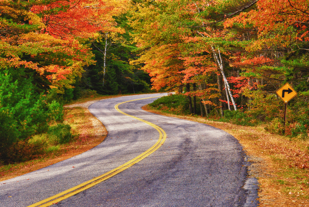 road in fall during a maine road trip