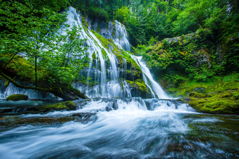 One of the most memorable waterfalls in the State, the Panther Creek Falls is one of the best places to visit in Washington State