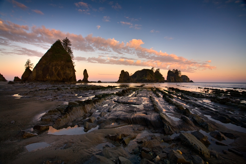 Don't neglect visiting Shi Shi Beach, one of the best places to visit in Washington State!