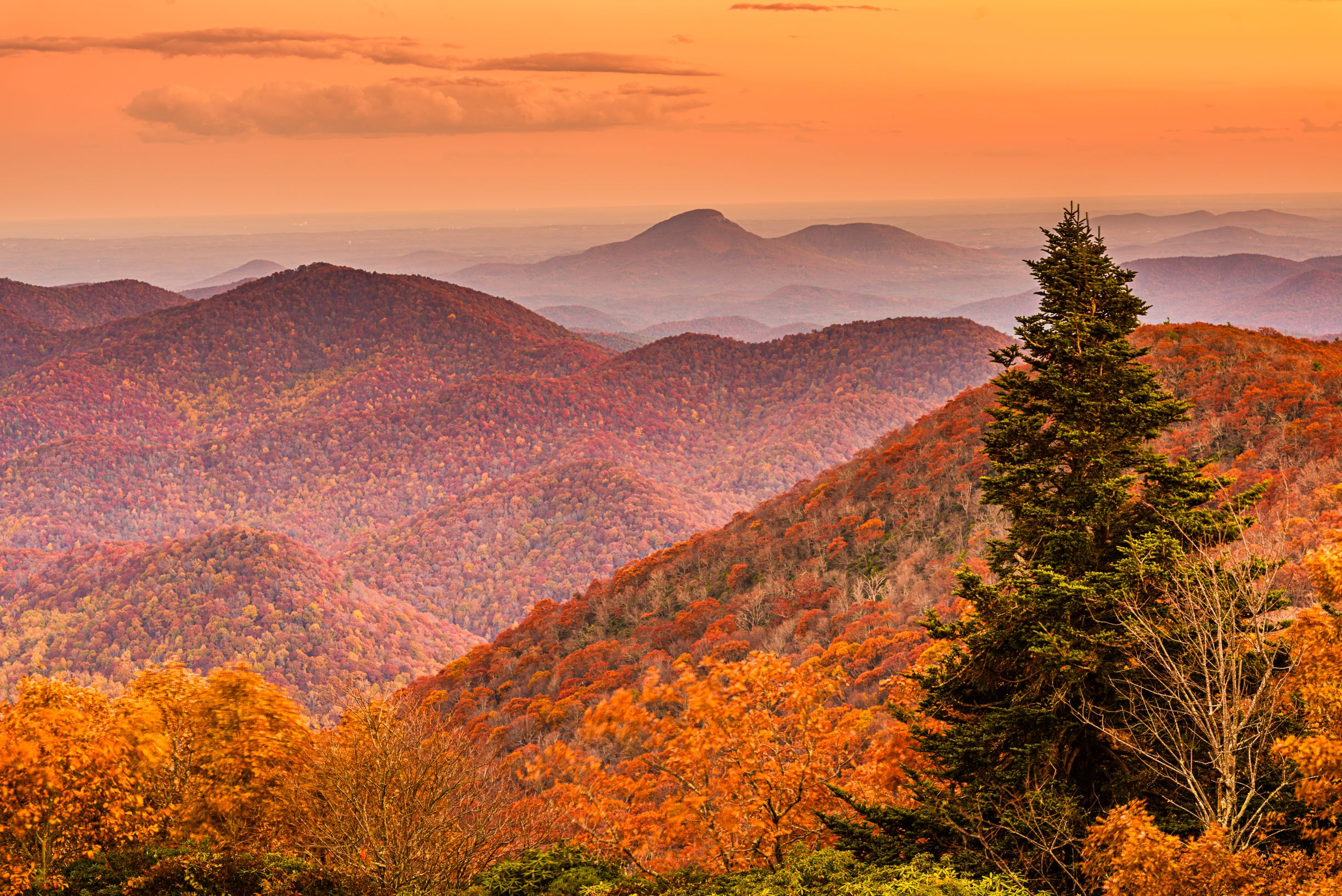 Photo from Brasstown Bald in Georgia showing fall foliage.