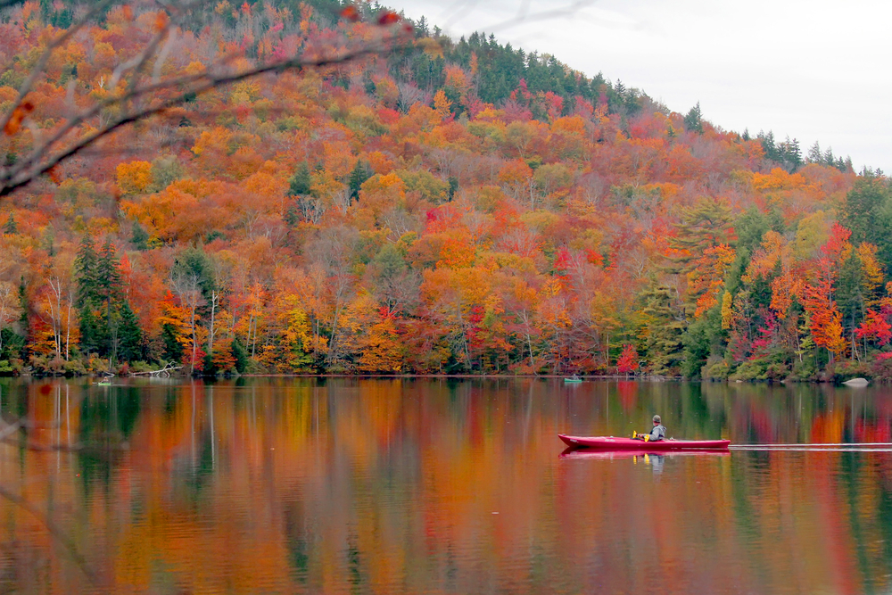 man in a canoe rowing on a river past a mountain full of fall foliage