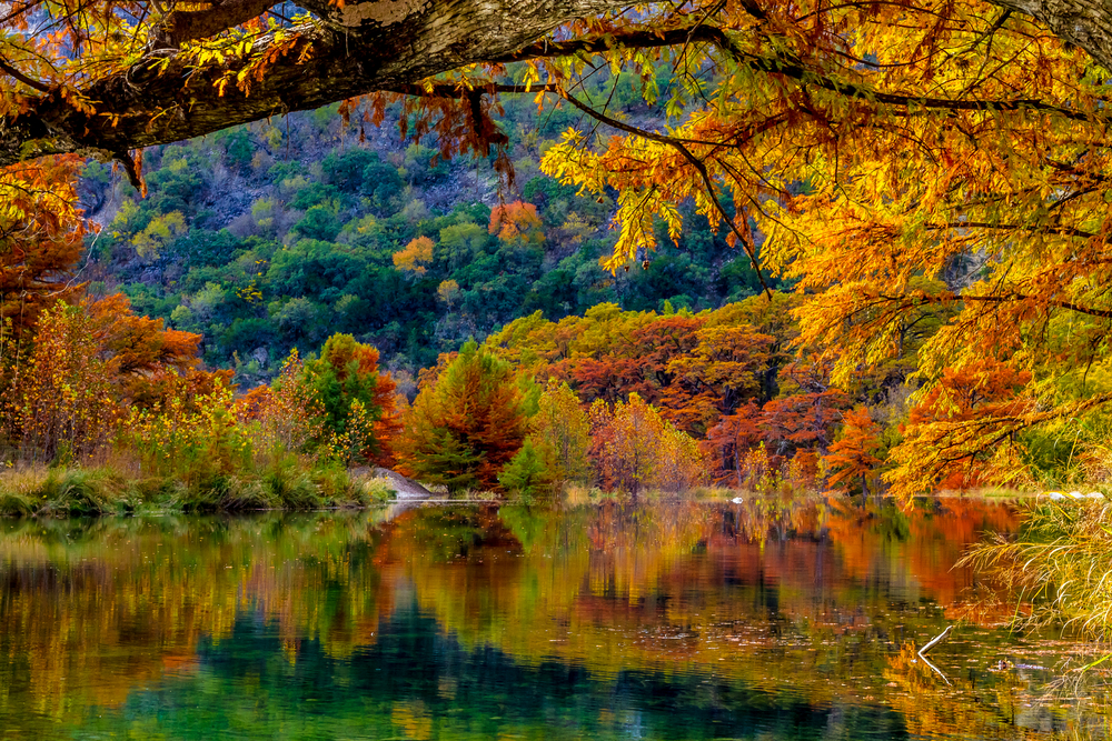emerald green lake surrounded by trees in autumn with overhanging branch fall in the USA