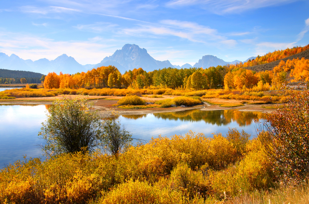 landscape with lake turned golden in the fall with towering mountains in the background fall in the USA