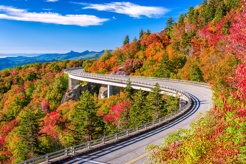 road curving through bright colorful fall trees in North Carolina Fall in the USA