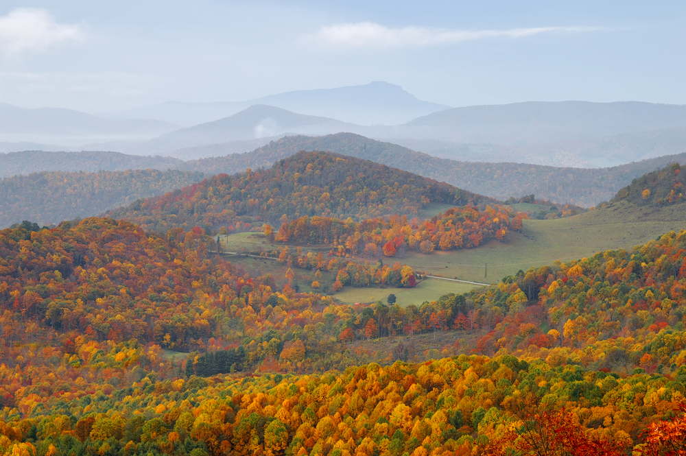 rows and rows of mountains covered in warm, autumn colored trees fall in the USA