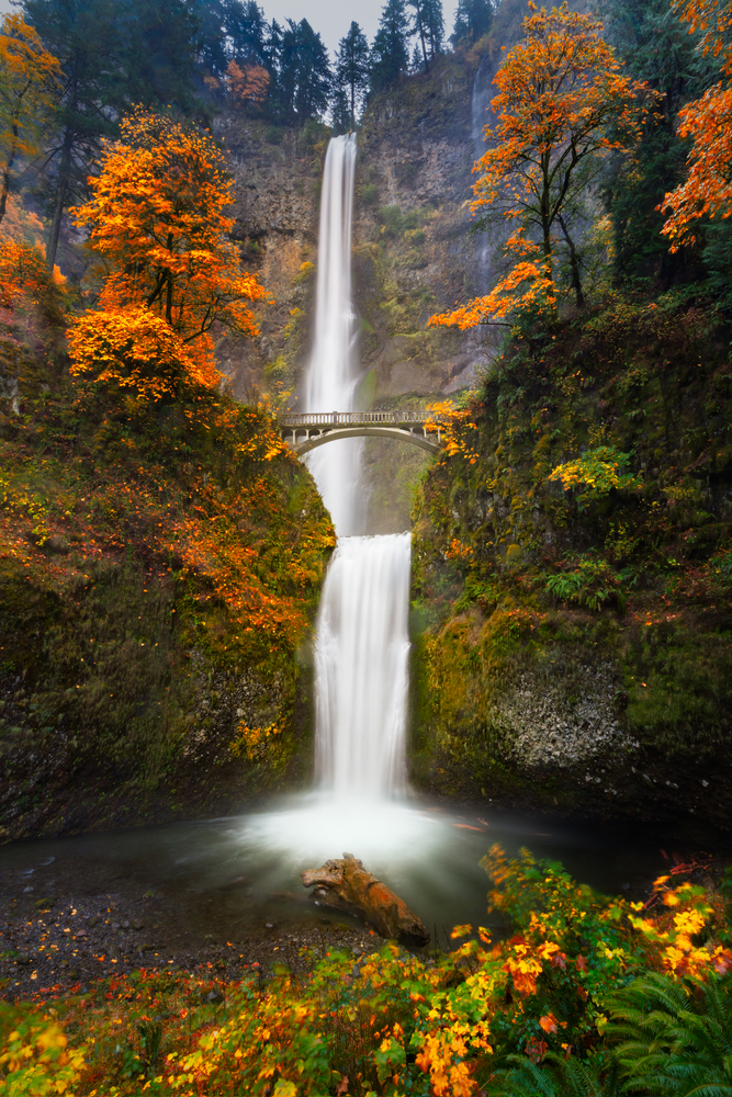 two tiered waterfall with bridge surrounded by fall colors