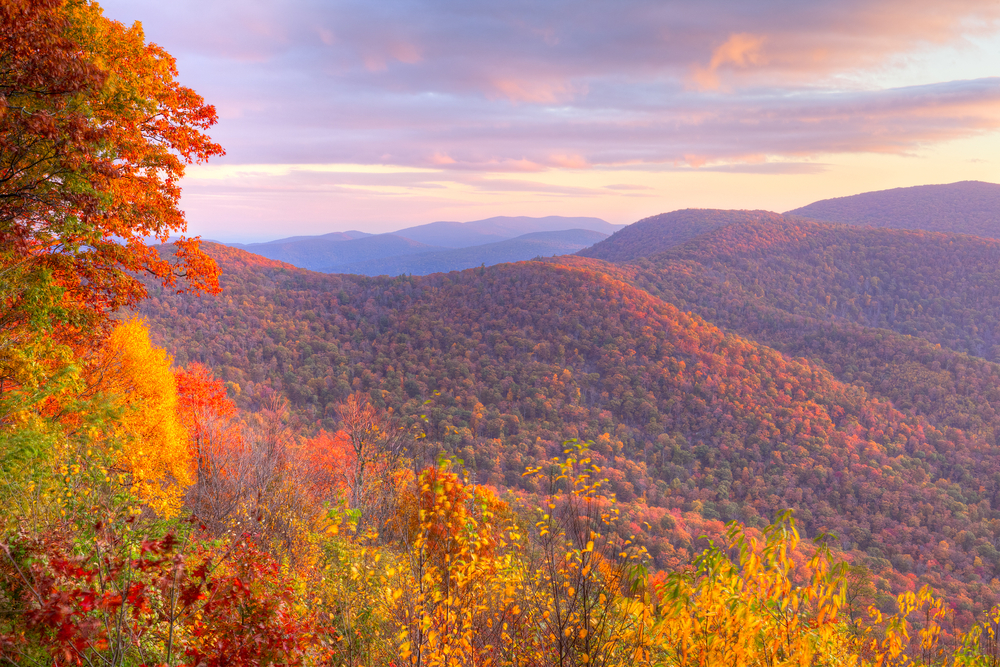 mountains completely covered in red and orange leaves of fall