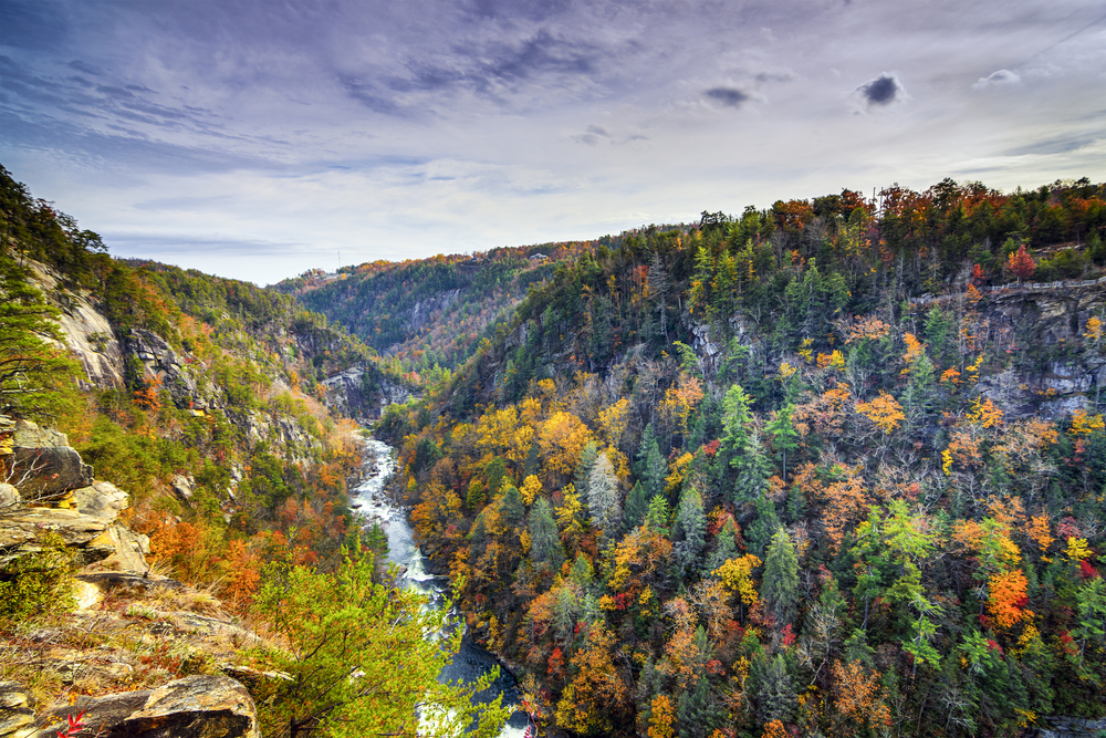 The stunning mountains and fall trees of Georgia