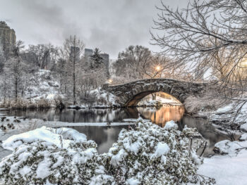 park with bridge covered in snow