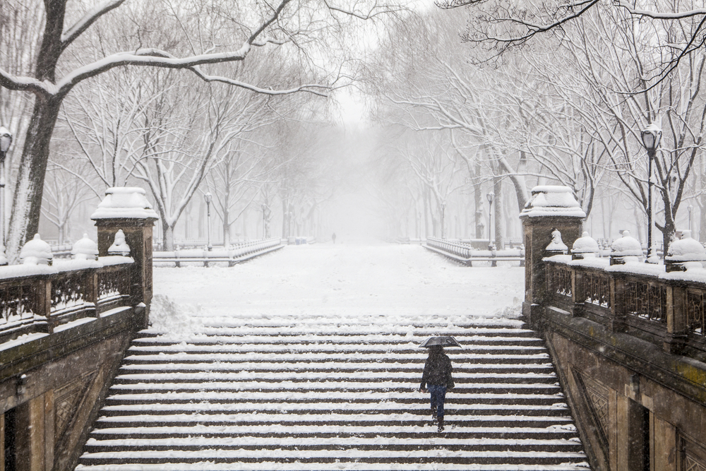person walking up snowy stairs in Central Park New York in Winter