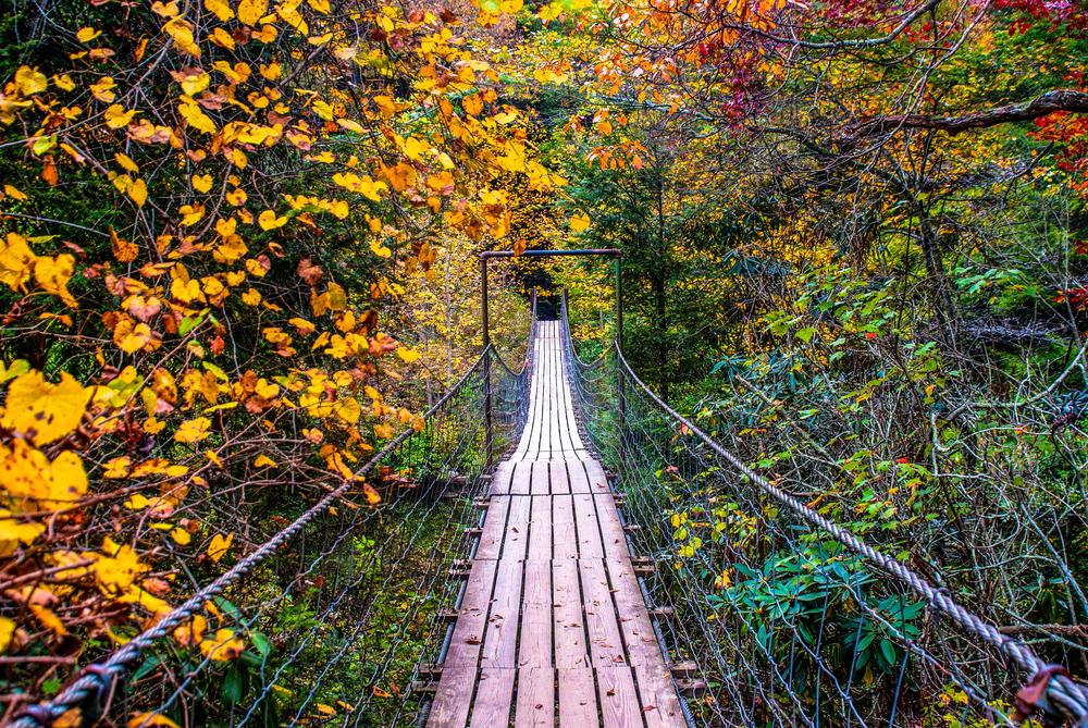 bridge crossing through red, orange, yellow, and green trees