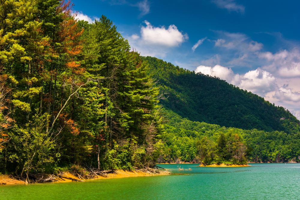 green trees lining turquoise lake