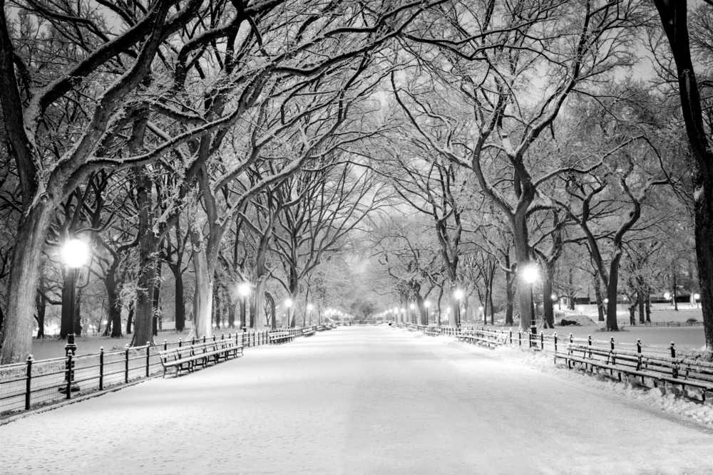 Central Park in the snow at Christmas
