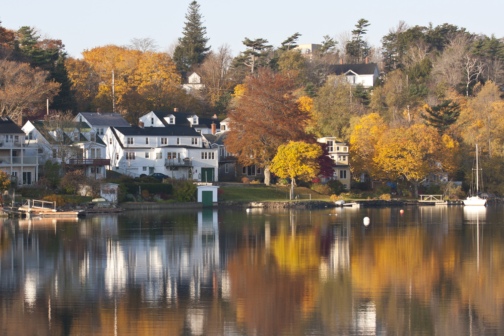 there's a variety of different fall themed activities in Halifax